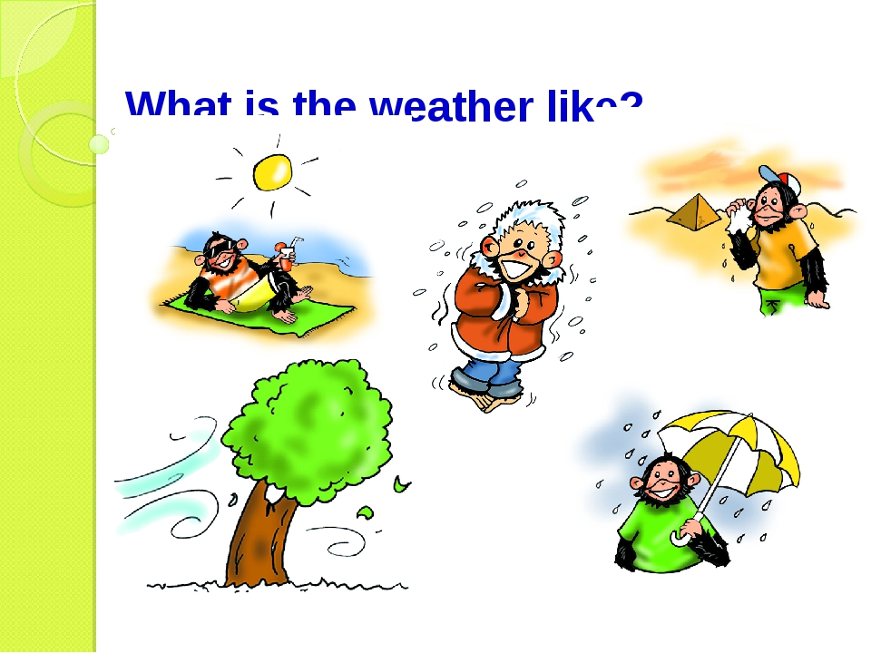 What is the weather like?
