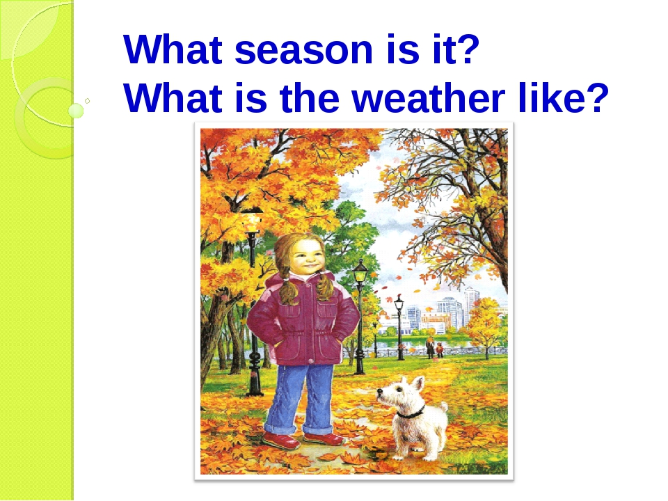 What season is it? What is the weather like?