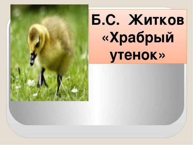 Б.С. Житков «Храбрый утенок»