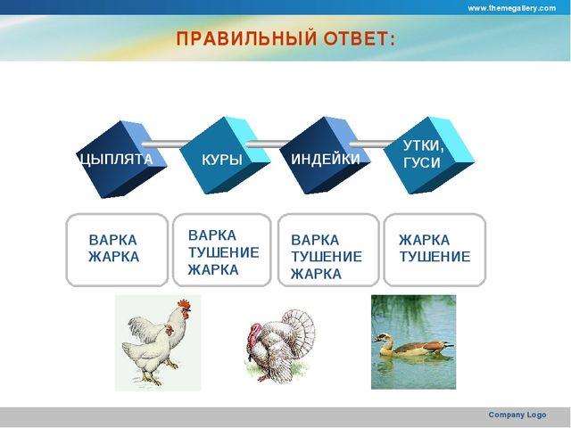 www.themegallery.com Company Logo ПРАВИЛЬНЫЙ ОТВЕТ: ЦЫПЛЯТА КУРЫ ИНДЕЙКИ УТКИ...