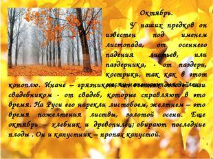Октябрь. У наших предков он известен под именем листопада, от осеннего падени