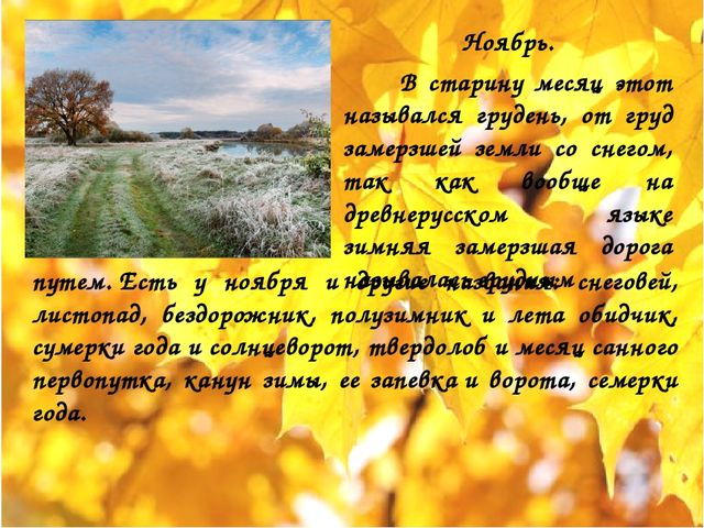 Ноябрь. В старину месяц этот назывался грудень, от груд замерзшей земли со сн...