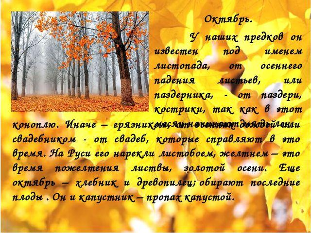 Октябрь. У наших предков он известен под именем листопада, от осеннего падени...