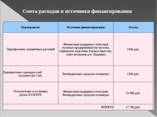 Смета расходов и источники финансирования Мероприятие Источник финансирования