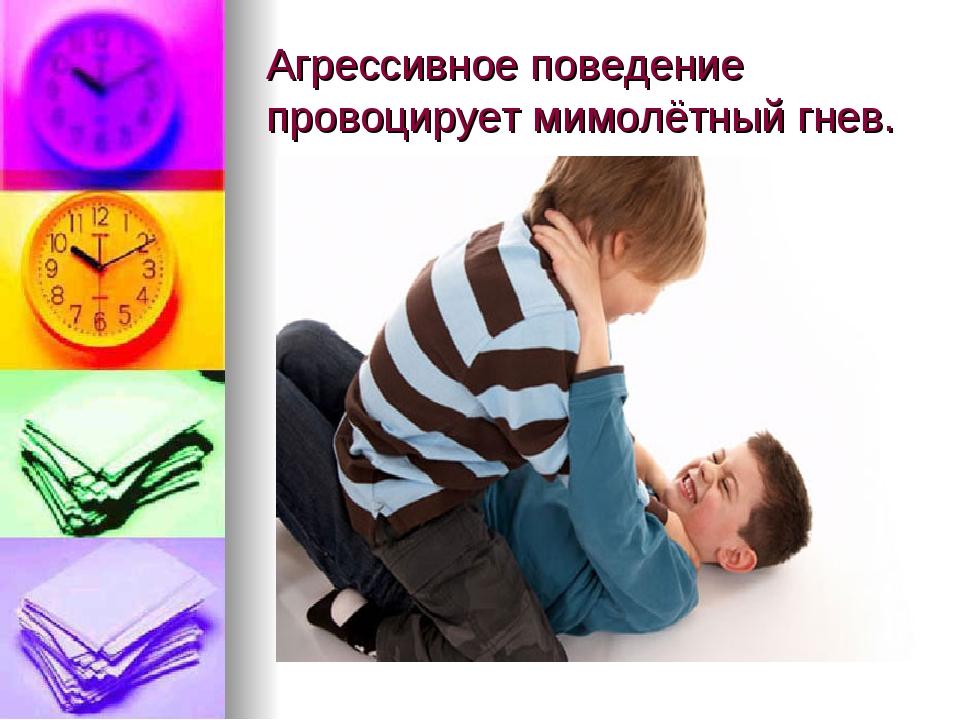 Агрессивное поведение провоцирует мимолётный гнев.