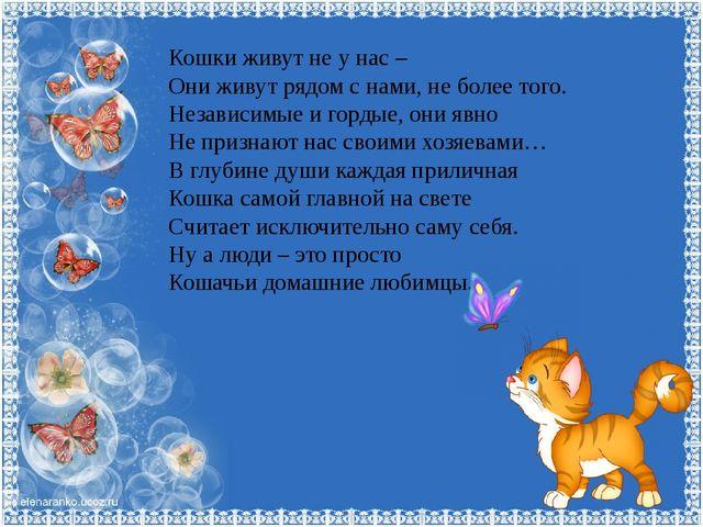 Кошки живут не у нас – Они живут рядом с нами, не более того. Независимые и г...