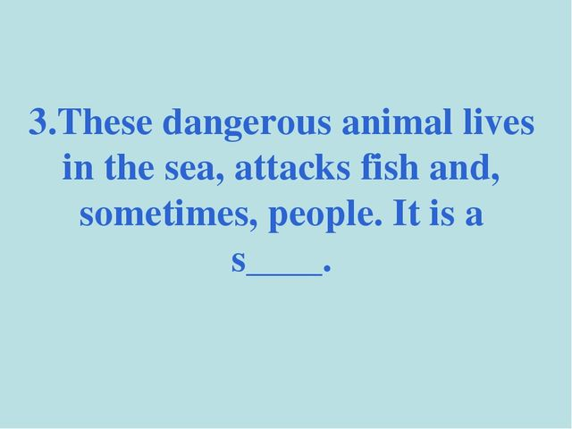 3.These dangerous animal lives in the sea, attacks fish and, sometimes, peopl...
