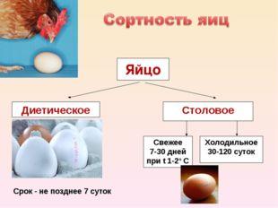 Диетическое Столовое Свежее 7-30 дней при t 1-2º С Холодильное 30-120 суток
