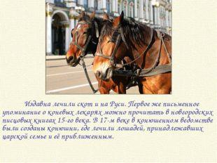 Издавна лечили скот и на Руси. Первое же письменное упоминание о коневых лек