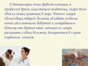 У ветеринарии очень древняя история, а профессия врача, исцеляющего животны