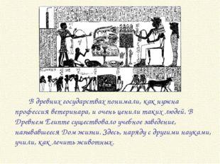 В древних государствах понимали, как нужна профессия ветеринара, и очень це