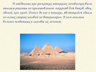 В найденных при раскопках папирусах-лечебниках были описаны рецепты по приго