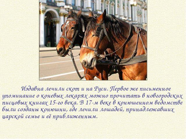 Издавна лечили скот и на Руси. Первое же письменное упоминание о коневых лек...