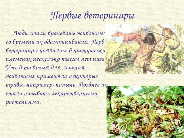 Первые ветеринары Люди стали врачевать животных со времени их одомашнивания....