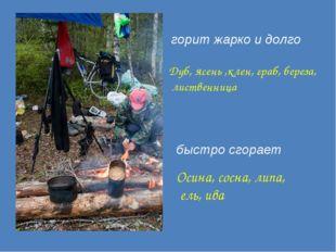горит жарко и долго Дуб, ясень ,клен, граб, береза, лиственница быстро сгора