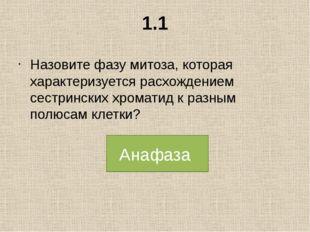 2.1 Назовите фазу мейоза, в которой происходит репликация ДНК? Интерфаза