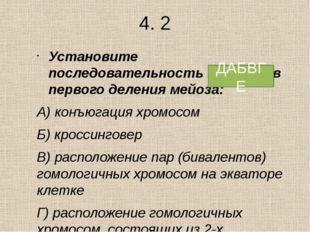 2.2 Какие процессы протекают во время мейоза? 1) транскрипция 2) редукционно