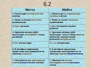 10.2 Почему в результате митоза дочерние клетки генетически сходны, а в резул