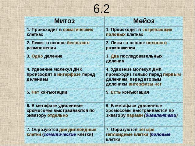 10.2 Почему в результате митоза дочерние клетки генетически сходны, а в резул...