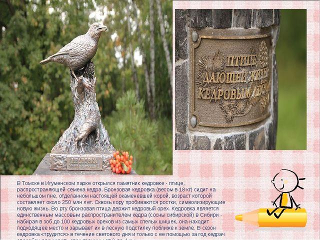 В Томске в Игуменском парке открылся памятник кедровке - птице, распространяю...