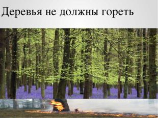 Деревья не должны гореть