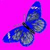hello_html_1ea5e87f.png