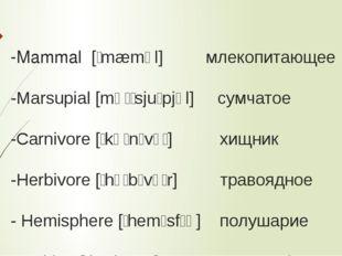 -Mammal [ˈmæməl] млекопитающее -Marsupial [mɑːˈsjuːpjəl] сумчатое -Carnivore