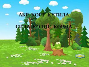 АКР КОРТ КУТИЛА СИЛА КОЛОС КОРМА