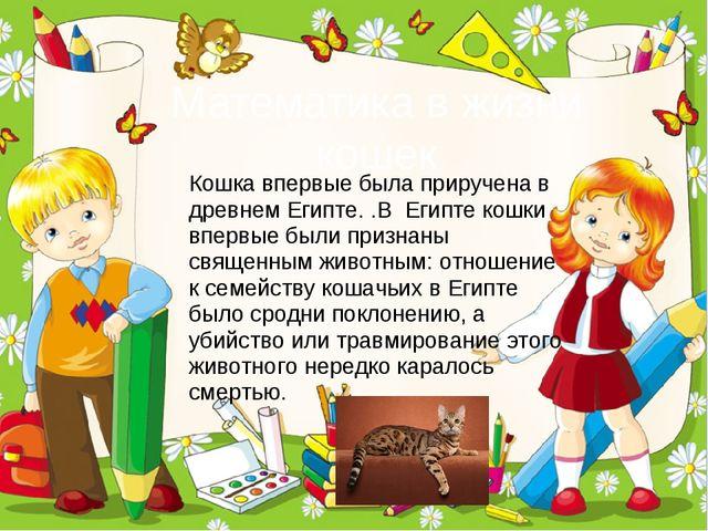 Математика в жизни кошек ProPowerPoint.Ru