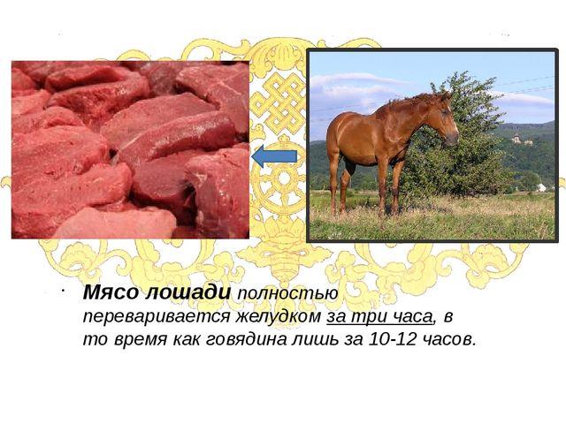 Мясо лошади полностью переваривается желудком за три часа, в то время как гов...