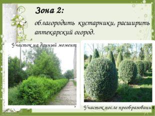 Зона 2:  облагородить кустарники, расширить аптекарский огород. Участок на д
