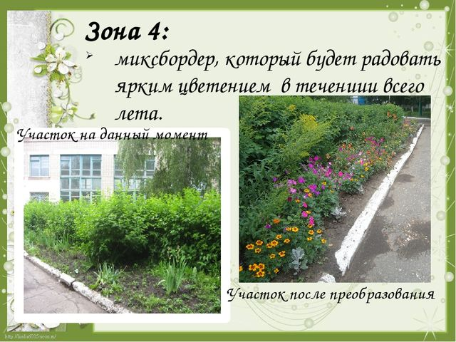 Зона 4:  миксбордер, который будет радовать ярким цветением в течениии всего...