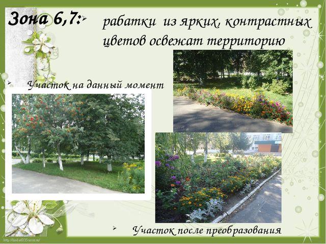 Зона 6,7:  рабатки из ярких, контрастных цветов освежат территорию Участок н...