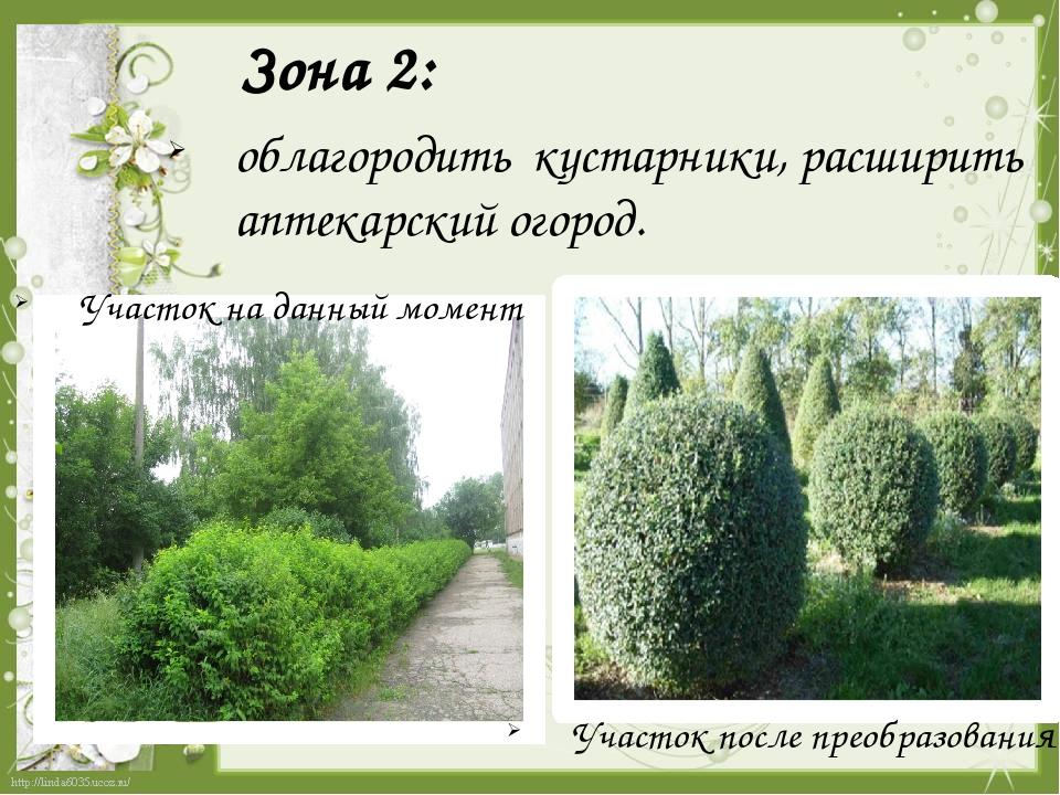 Зона 2:  облагородить кустарники, расширить аптекарский огород. Участок на д...