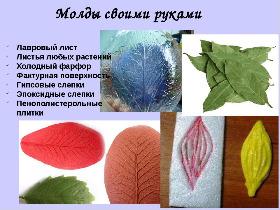 Молды своими руками Лавровый лист Листья любых растений Холодный фарфор Факту...