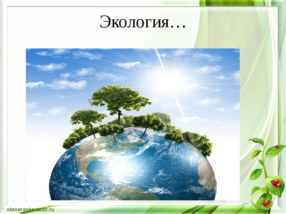 Экология…