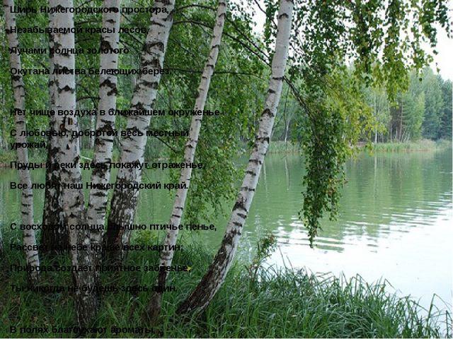 Ширь Нижегородского простора, Незабываемой красы лесов, Лучами солнца золотог...