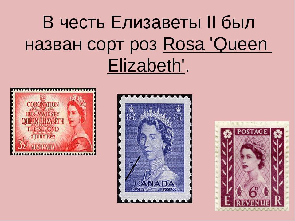 В честь Елизаветы II был назван сорт роз Rosa 'Queen Elizabeth'.