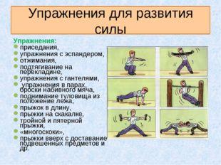 Упражнения для развития силы Упражнения: приседания, упражнения с эспандером,