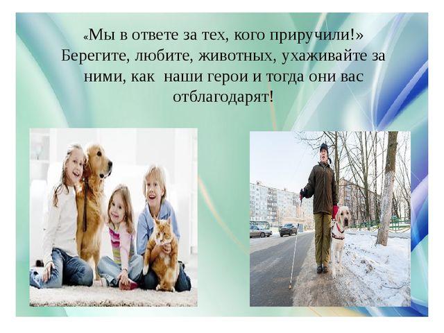 «Мы в ответе за тех, кого приручили!» Берегите, любите, животных, ухаживайте...