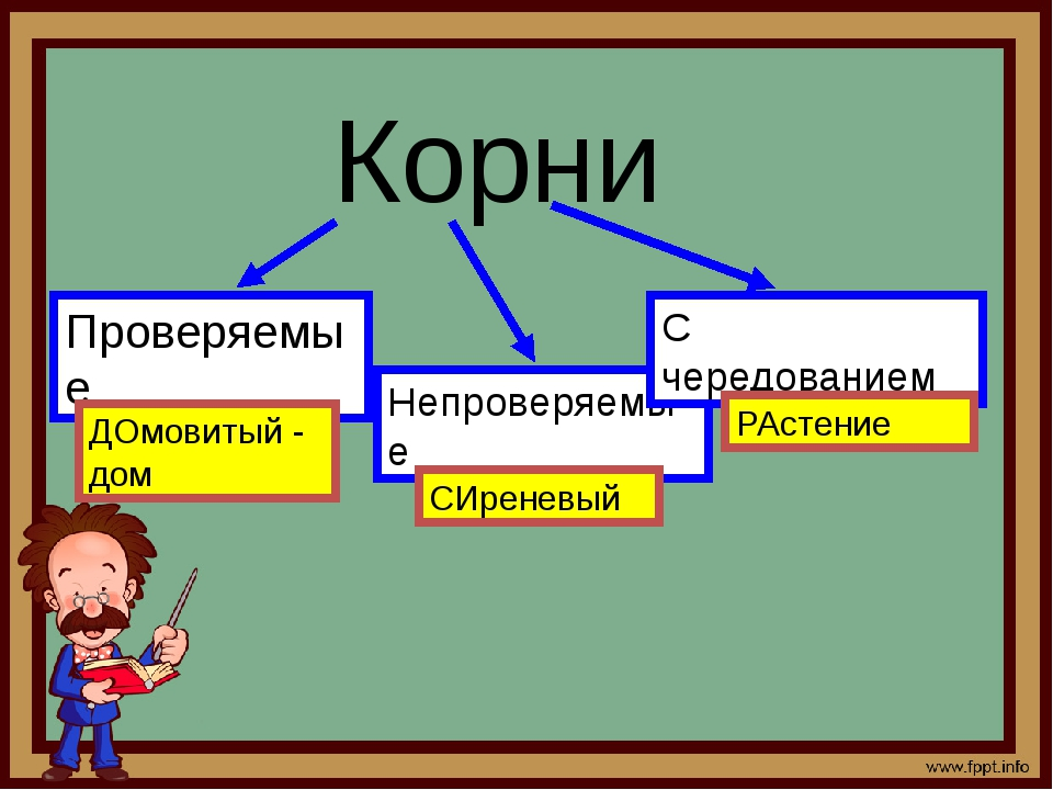 Корни Проверяемые Непроверяемые С чередованием ДОмовитый - дом СИреневый РАс...