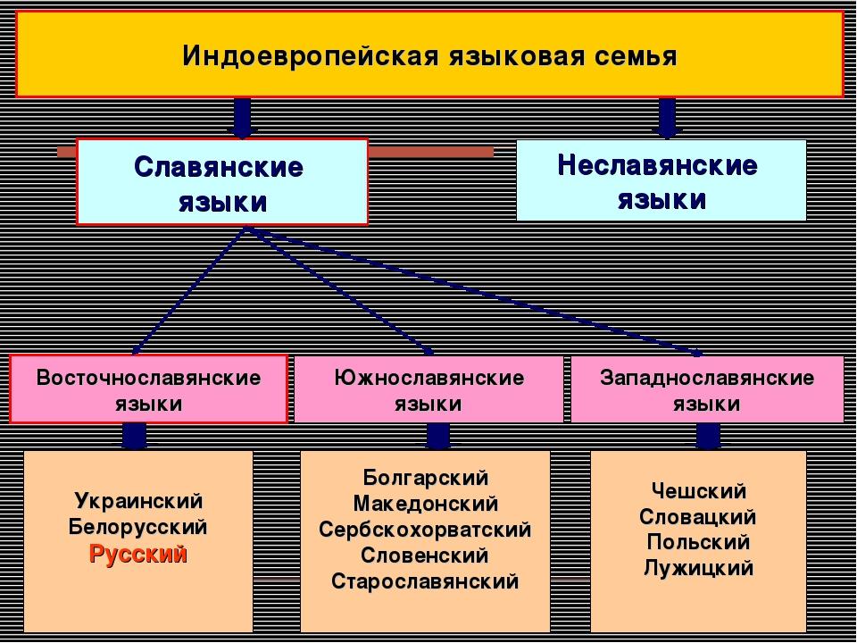Славянские языки Украинский Белорусский Русский Болгарский Македонский Сербск...
