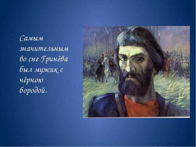 Самым значительным во сне Гринёва был мужик с чёрною бородой.