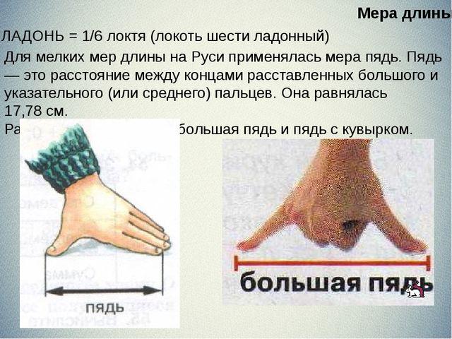 ЛАДОНЬ = 1/6 локтя (локоть шести ладонный) Для мелких мер длины на Руси при...
