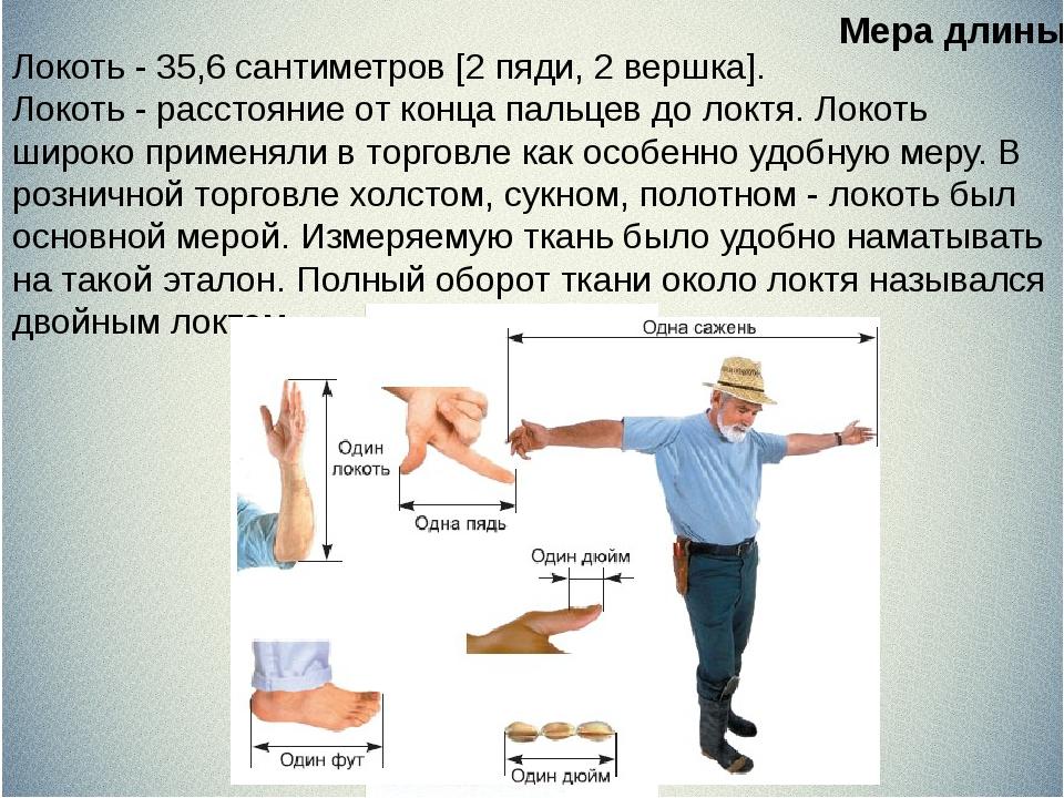 Локоть - 35,6 сантиметров [2 пяди, 2 вершка]. Локоть - расстояние от конца п...