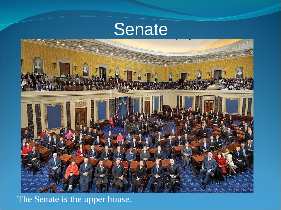 Senate The Senate is the upper house.