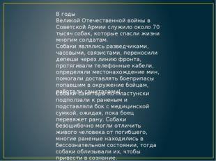 В годыВеликой Отечественной войнывСоветской Армиислужило около 70 тысяч с