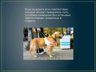 Если на дороге есть препятствие, которое мешает преодолеть путь, то собака-пр
