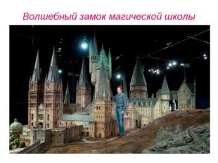 Волшебный замок магической школы