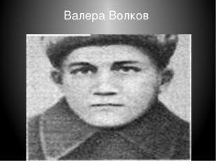 Валера Волков